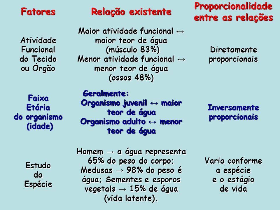 Fatores Relação existente Proporcionalidade entre as relações AtividadeFuncional do Tecido ou Órgão Maior atividade funcional maior teor de água (músc