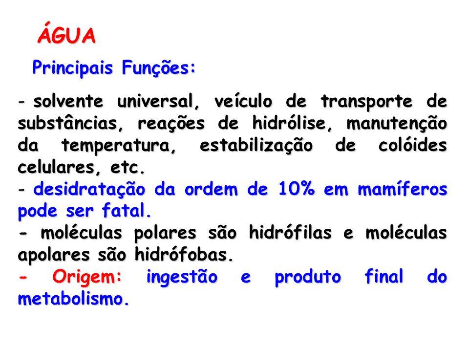 ÁGUA Principais Funções: - solvente universal, veículo de transporte de substâncias, reações de hidrólise, manutenção da temperatura, estabilização de