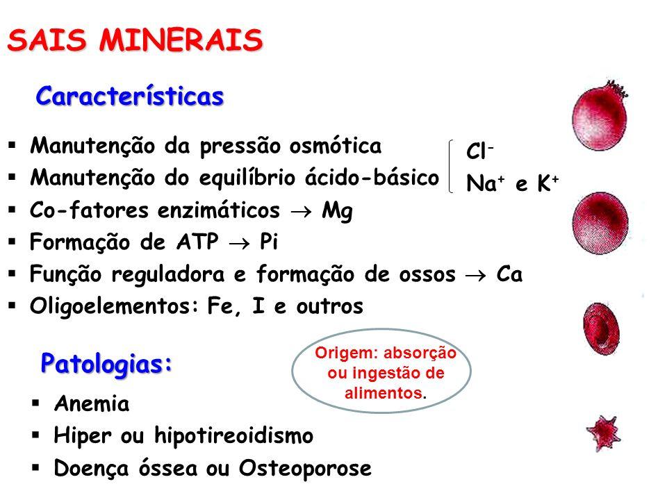 SAIS MINERAIS Características Manutenção da pressão osmótica Manutenção do equilíbrio ácido-básico Co-fatores enzimáticos Mg Formação de ATP Pi Função