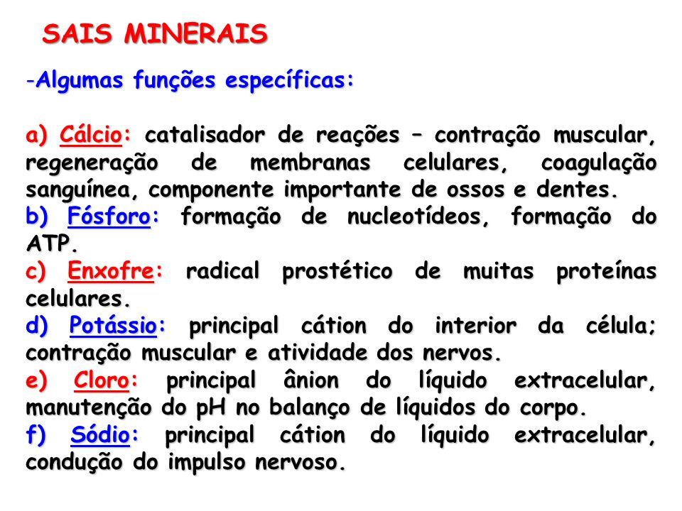 -Algumas funções específicas: a) Cálcio: catalisador de reações – contração muscular, regeneração de membranas celulares, coagulação sanguínea, compon