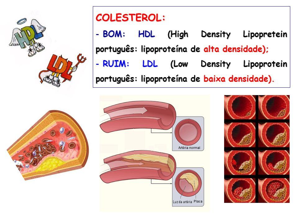 COLESTEROL: - BOM: HDL (High Density Lipopretein português: lipoproteína de alta densidade); - RUIM: LDL (Low Density Lipoprotein português: lipoprote