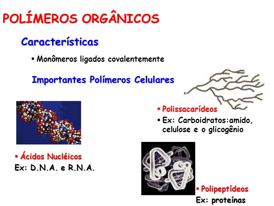 POLÍMEROS ORGÂNICOS Características Monômeros ligados covalentemente Importantes Polímeros Celulares Ácidos Nucléicos Ácidos Nucléicos Ex: D.N.A. e R.