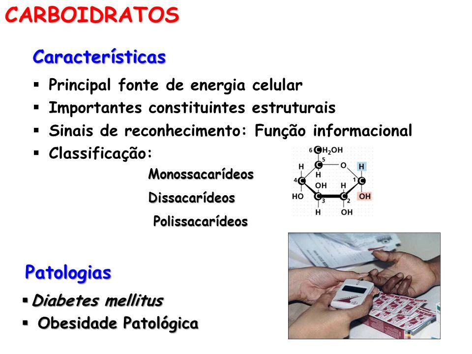 CARBOIDRATOSCaracterísticas Principal fonte de energia celular Importantes constituintes estruturais Sinais de reconhecimento: Função informacional Cl