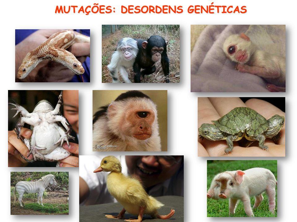 MUTAÇÕES: DESORDENS GENÉTICAS