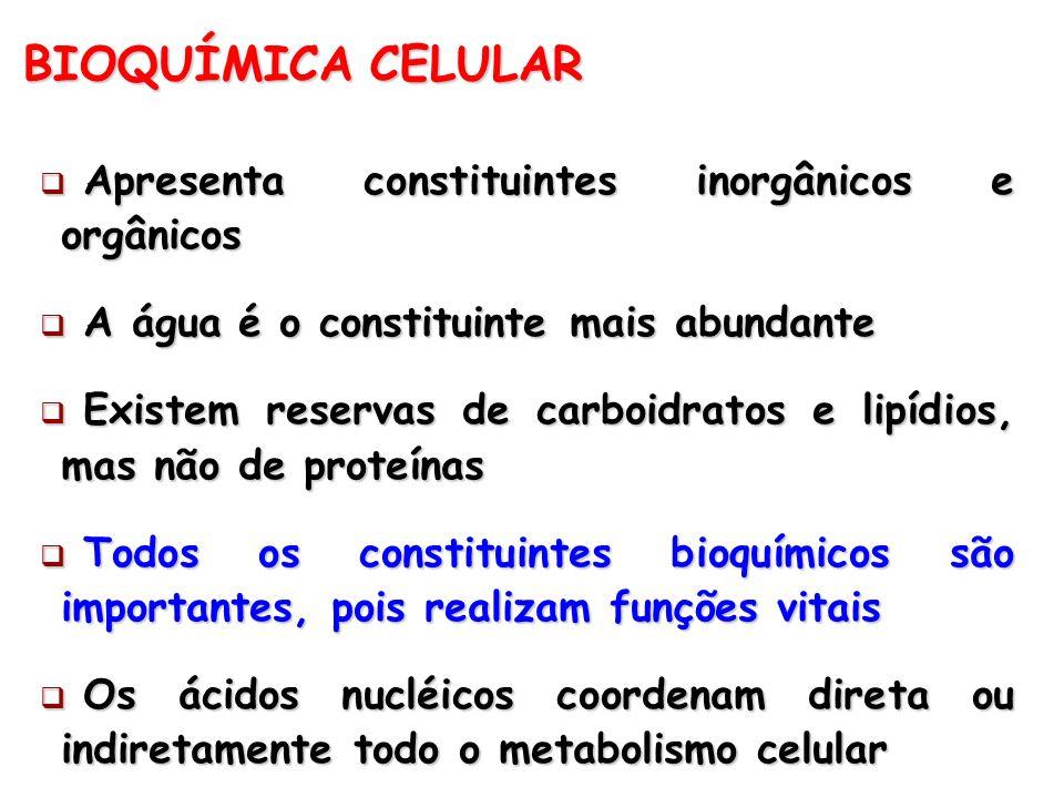 BIOQUÍMICA CELULAR Apresenta constituintes inorgânicos e orgânicos Apresenta constituintes inorgânicos e orgânicos A água é o constituinte mais abunda