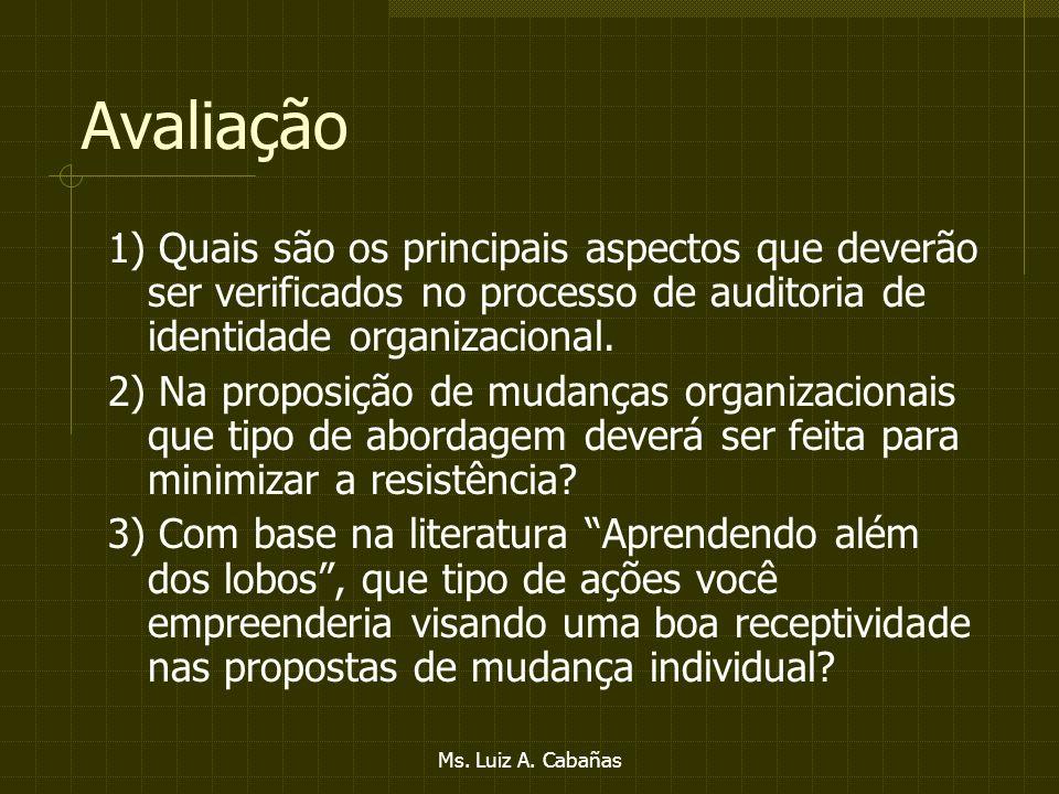 Ms. Luiz A. Cabañas Tipos de liderança Liberal Democrático Consensual Autocrático