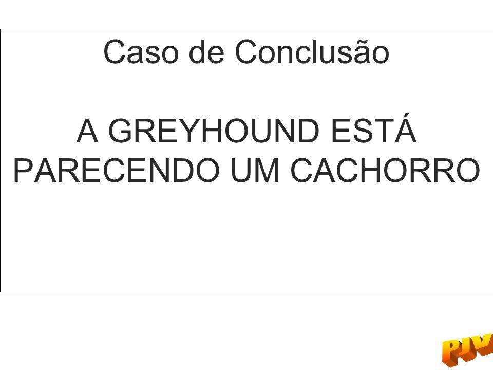 Caso de Conclusão A GREYHOUND ESTÁ PARECENDO UM CACHORRO