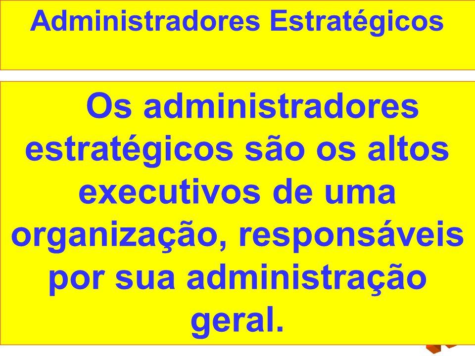 Administradores Estratégicos Os administradores estratégicos são os altos executivos de uma organização, responsáveis por sua administração geral.