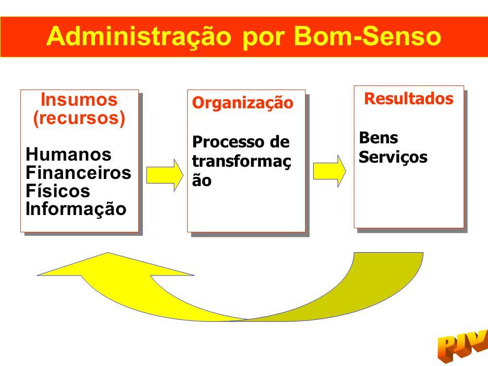 Administração por Bom-Senso Insumos (recursos) Humanos Financeiros Físicos Informação Insumos (recursos) Humanos Financeiros Físicos Informação Organi