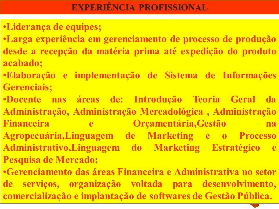 HISTÓRICO PROFISSIONAL: PPCI PPCI – Solucões Empresariais – Sócio diretor.