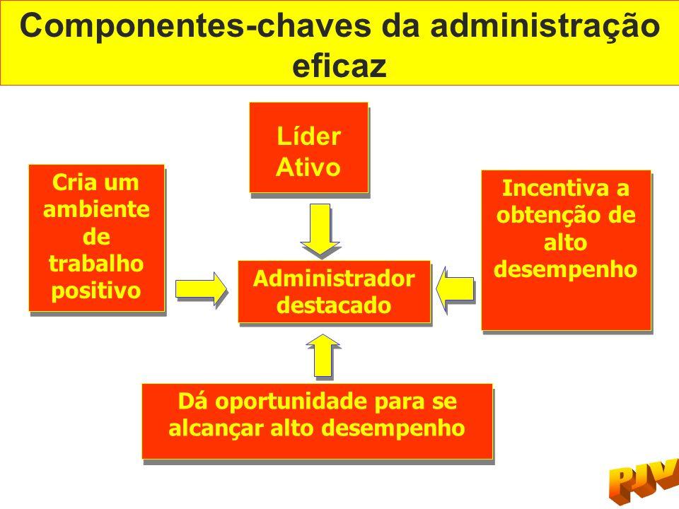 Componentes-chaves da administração eficaz Líder Ativo Líder Ativo Cria um ambiente de trabalho positivo Incentiva a obtenção de alto desempenho Admin