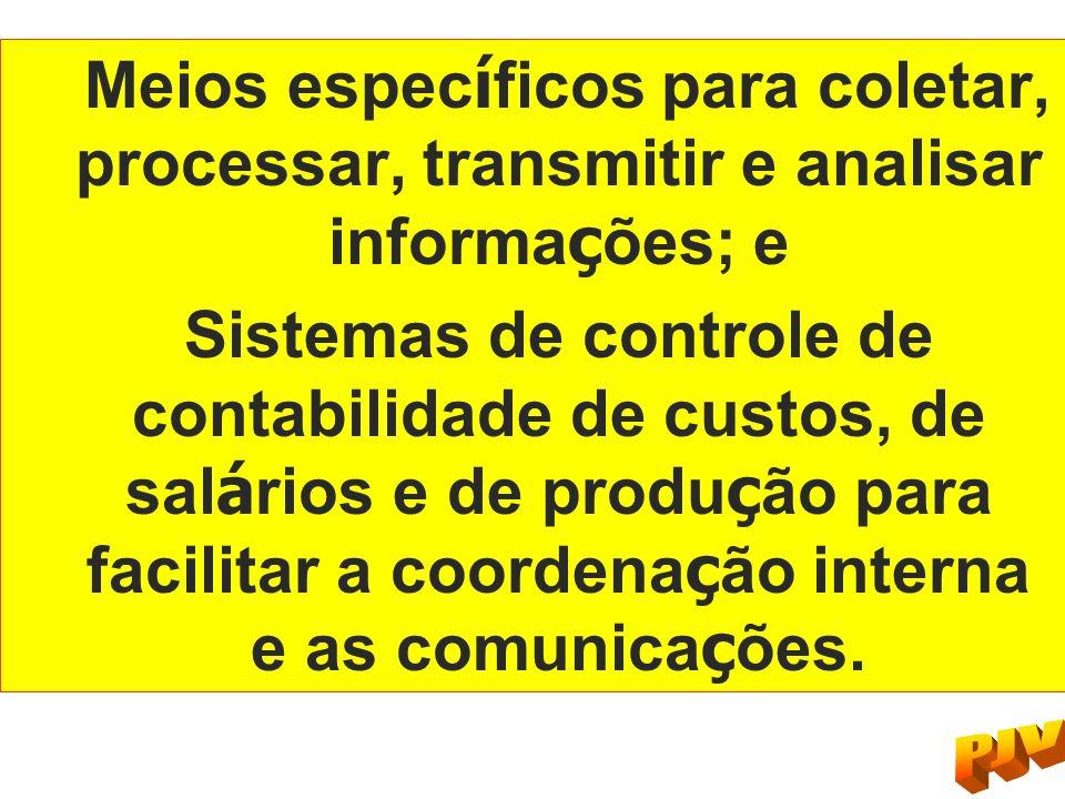 Meios espec í ficos para coletar, processar, transmitir e analisar informa ç ões; e Sistemas de controle de contabilidade de custos, de sal á rios e d