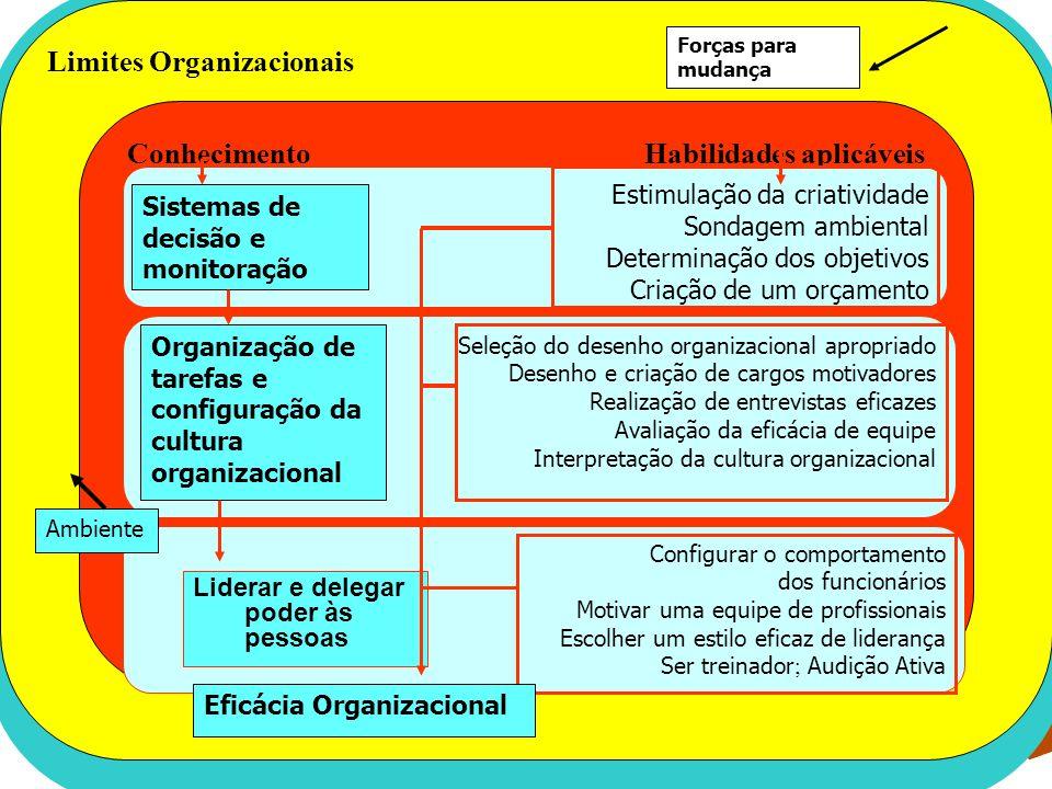 Limites Organizacionais Conhecimento Competências Gerenciais Habilidades aplicáveis Estimulação da criatividade Sondagem ambiental Determinação dos ob