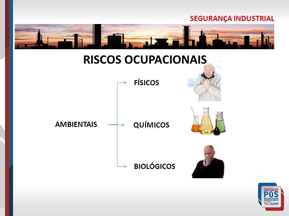 SEGURANÇA INDUSTRIAL RISCOS OCUPACIONAIS AMBIENTAIS FÍSICOS QUÍMICOS BIOLÓGICOS