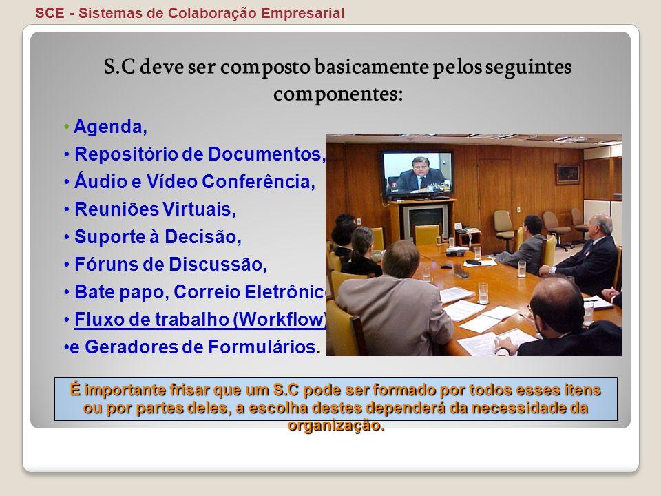 Agenda, Repositório de Documentos, Áudio e Vídeo Conferência, Reuniões Virtuais, Suporte à Decisão, Fóruns de Discussão, Bate papo, Correio Eletrônico