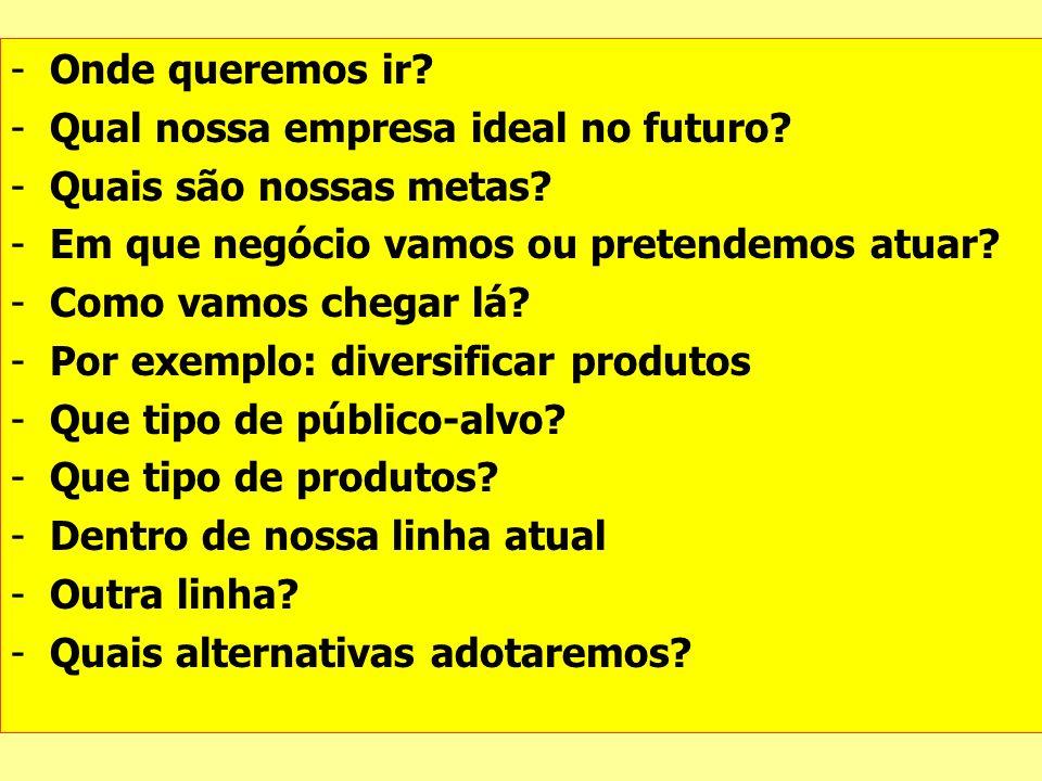 -Onde queremos ir? -Qual nossa empresa ideal no futuro? -Quais são nossas metas? -Em que negócio vamos ou pretendemos atuar? -Como vamos chegar lá? -P