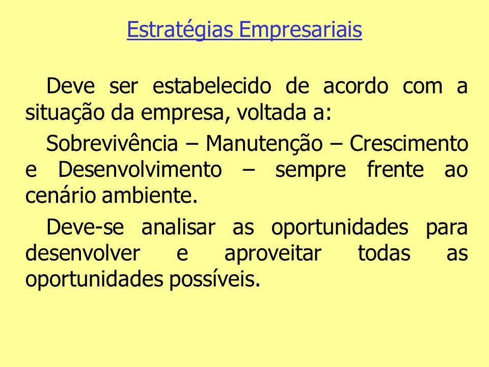 Estratégias Empresariais Deve ser estabelecido de acordo com a situação da empresa, voltada a: Sobrevivência – Manutenção – Crescimento e Desenvolvime