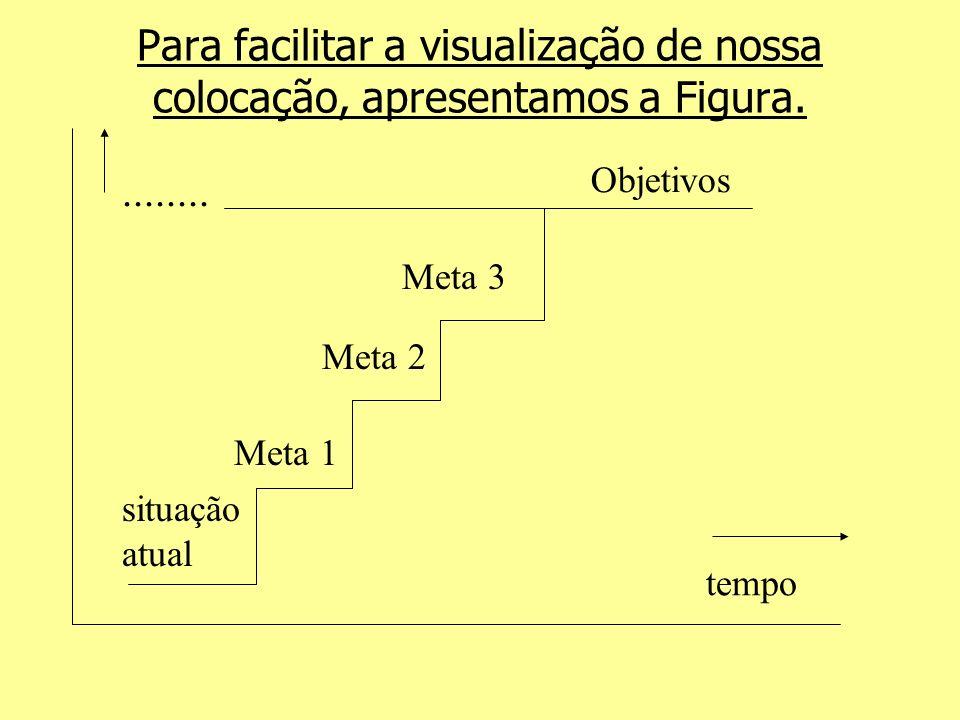Para facilitar a visualização de nossa colocação, apresentamos a Figura. Meta 1 Meta 2 Meta 3 Objetivos situação atual tempo........