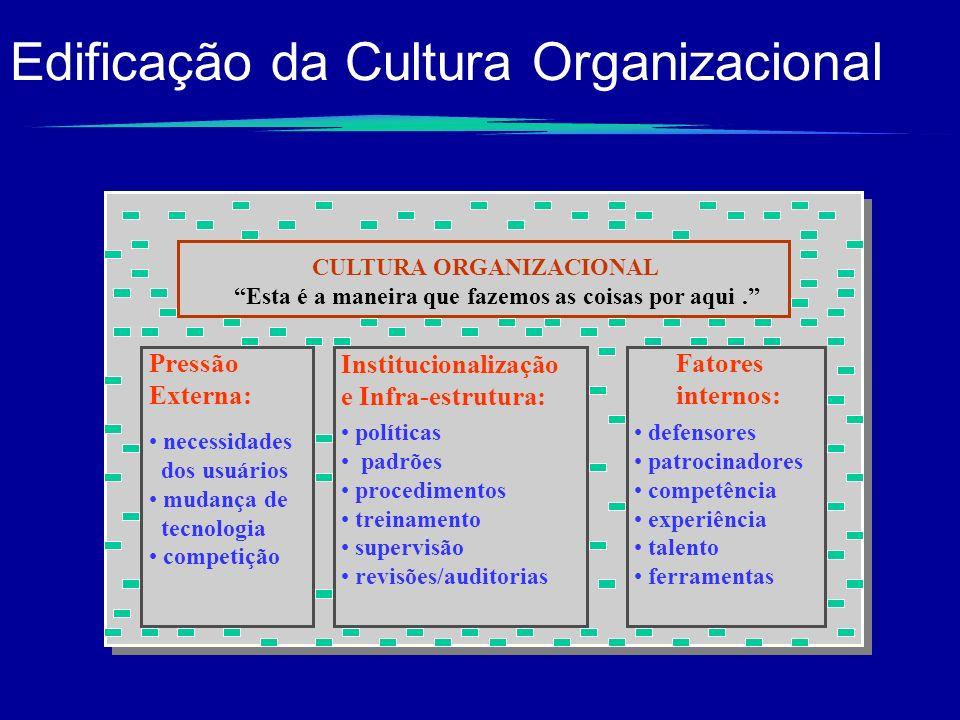 Edificação da Cultura Organizacional