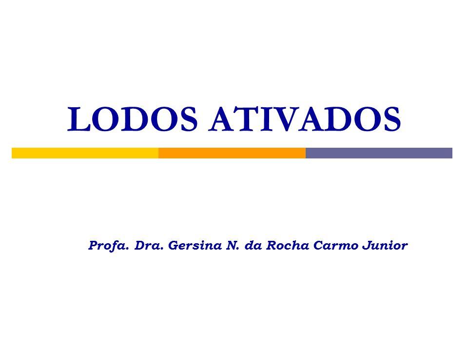 LODOS ATIVADOS Profa. Dra. Gersina N. da Rocha Carmo Junior