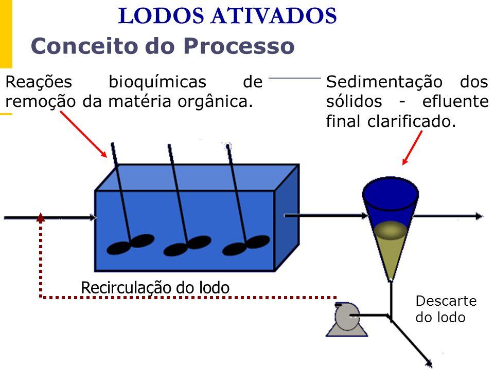 Recirculação do lodo Reações bioquímicas de remoção da matéria orgânica. Sedimentação dos sólidos - efluente final clarificado. Conceito do Processo D