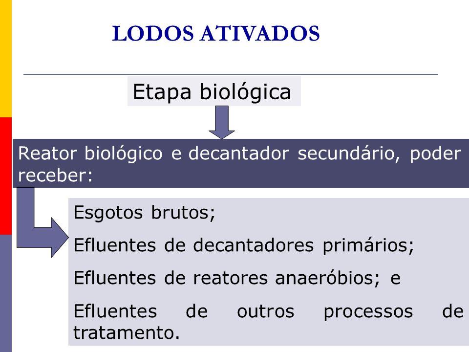 LODOS ATIVADOS Etapa biológica Reator biológico e decantador secundário, poder receber: Esgotos brutos; Efluentes de decantadores primários; Efluentes
