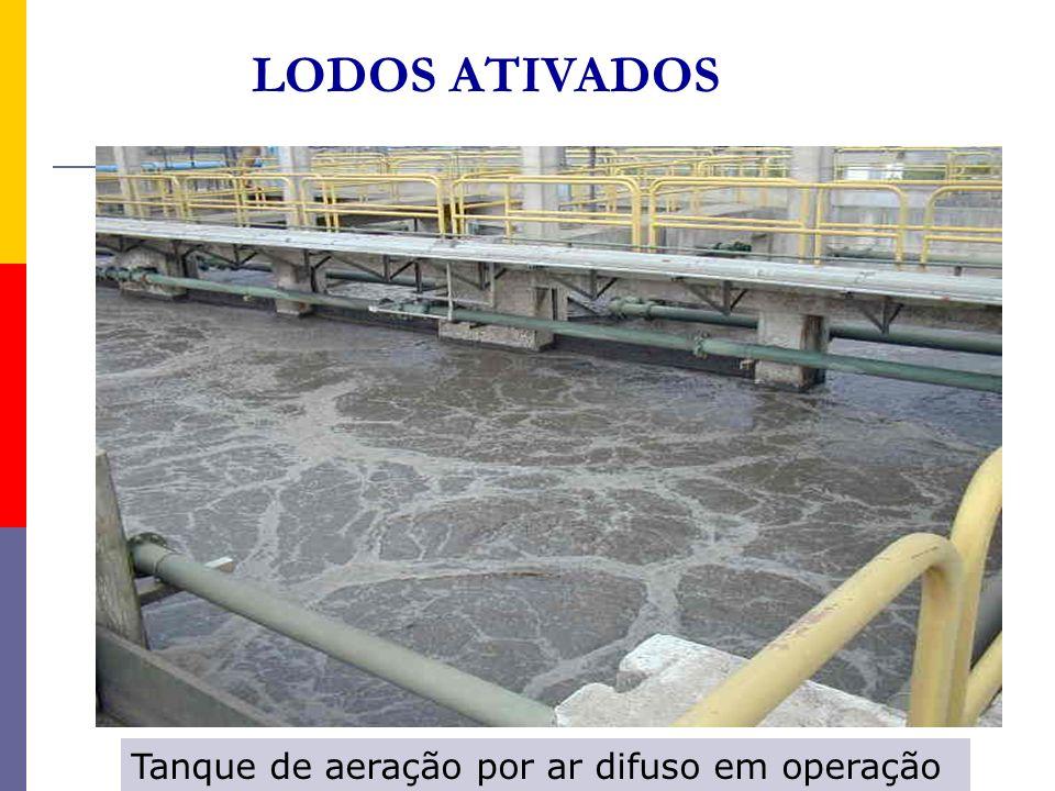 Tanque de aeração por ar difuso em operação LODOS ATIVADOS