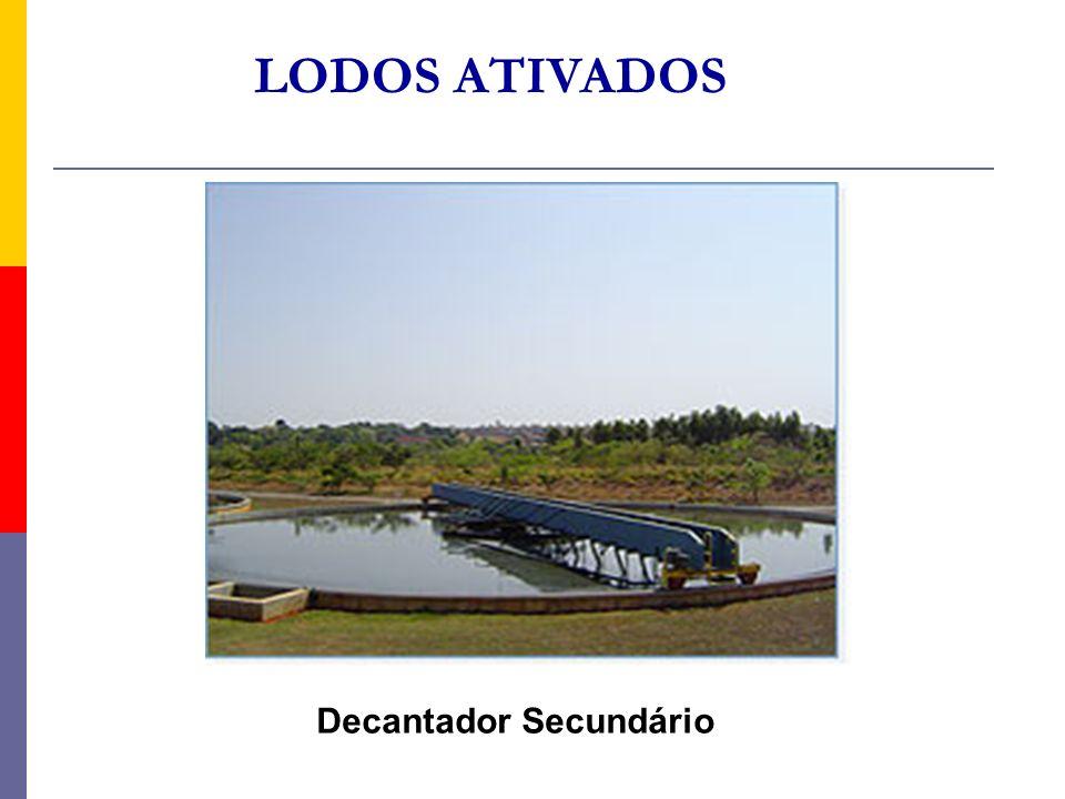 LODOS ATIVADOS Decantador Secundário