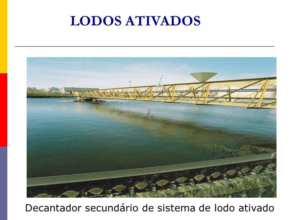Decantador secundário de sistema de lodo ativado LODOS ATIVADOS
