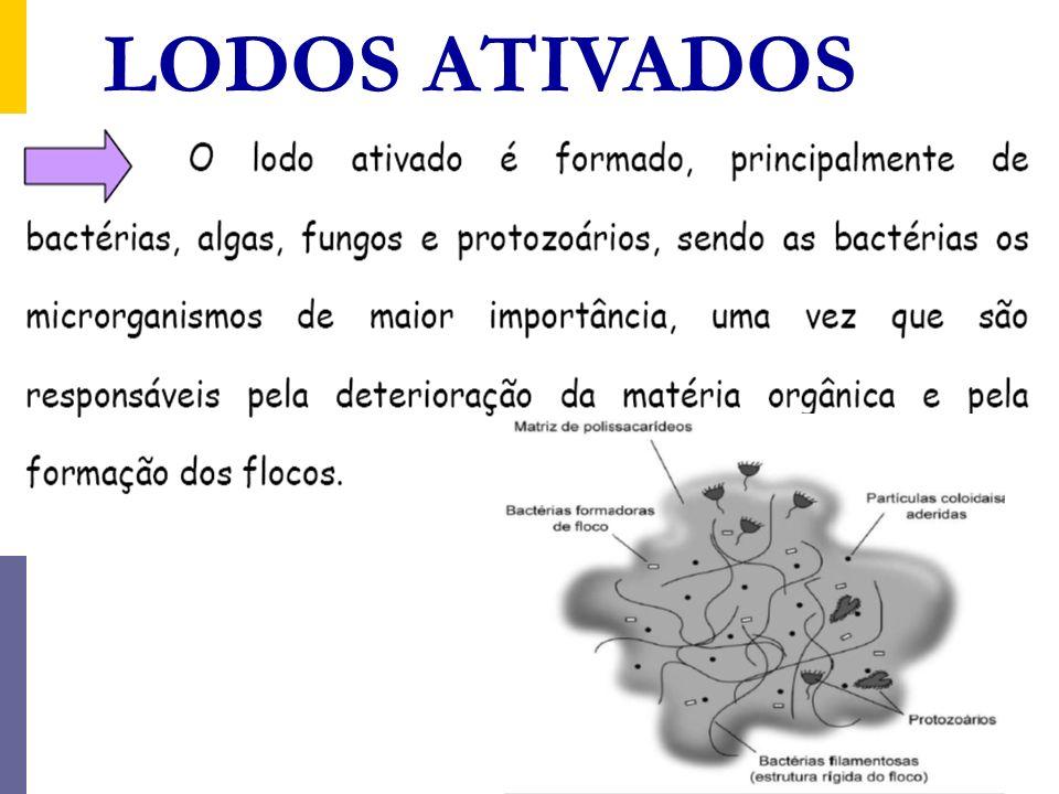 LODOS ATIVADOS