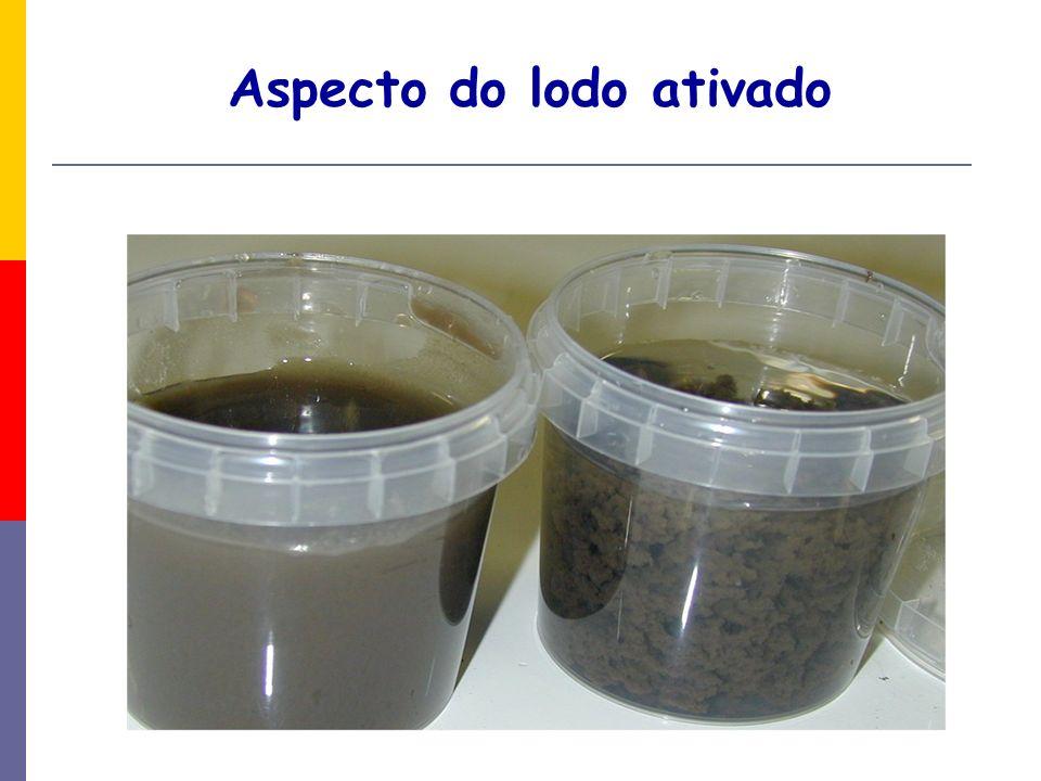 LODOS ATIVADOS Esse tipo de sistema é amplamente utilizado, a nível mundial.