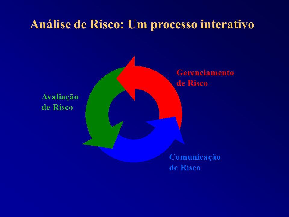 Análise de Risco: Um processo interativo Avaliação de Risco Gerenciamento de Risco Comunicação de Risco