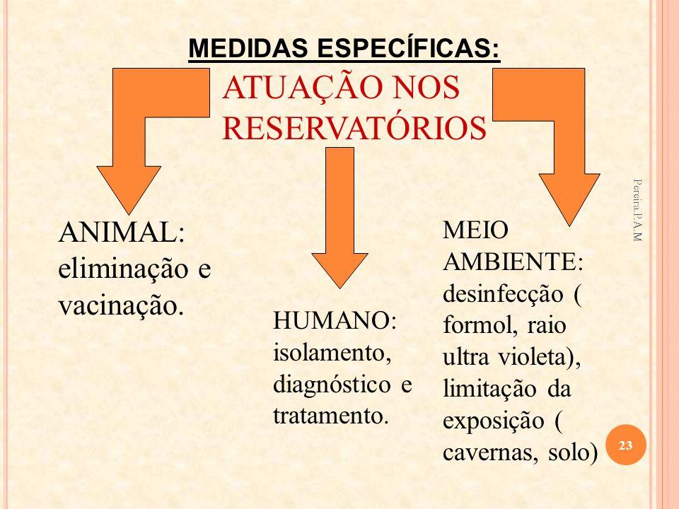 ATUAÇÃO NOS RESERVATÓRIOS ANIMAL: eliminação e vacinação. HUMANO: isolamento, diagnóstico e tratamento. MEIO AMBIENTE: desinfecção ( formol, raio ultr