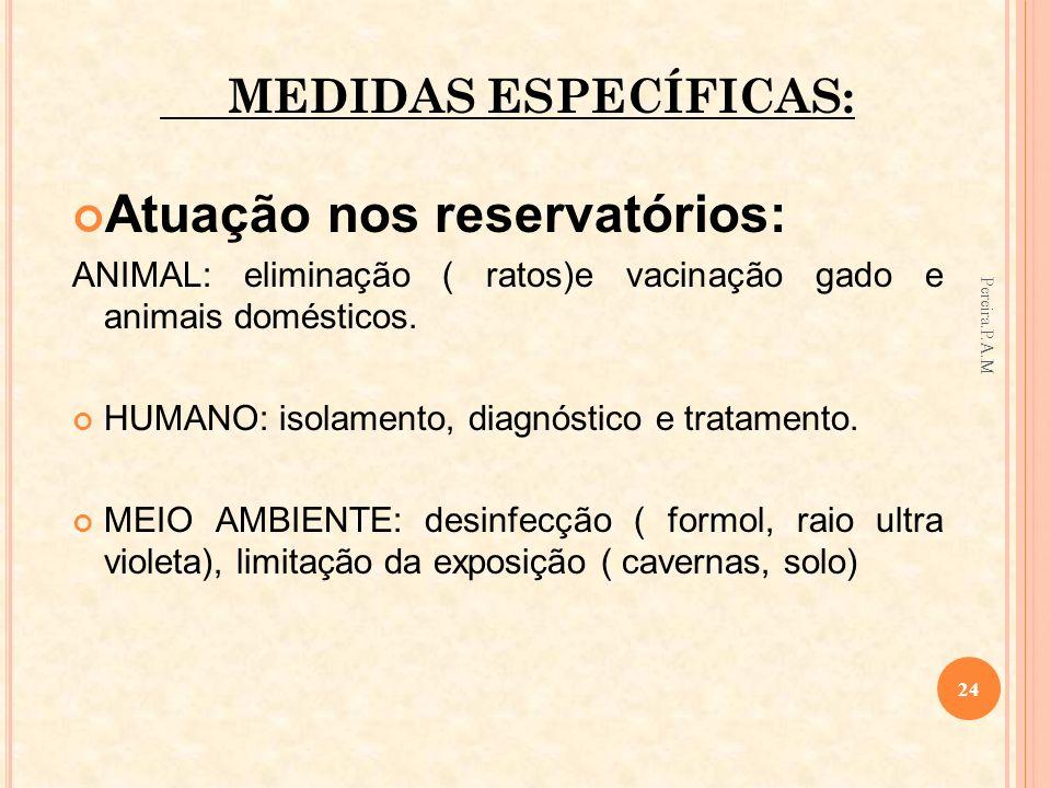 Atuação nos reservatórios: ANIMAL: eliminação ( ratos)e vacinação gado e animais domésticos. HUMANO: isolamento, diagnóstico e tratamento. MEIO AMBIEN