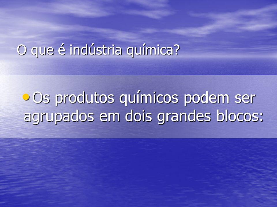 O que é indústria química? Os produtos químicos podem ser agrupados em dois grandes blocos: Os produtos químicos podem ser agrupados em dois grandes b