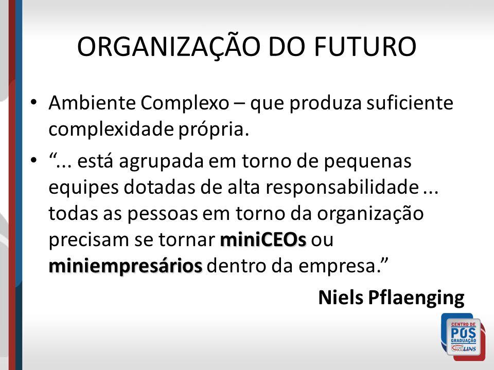 ORGANIZAÇÃO DO FUTURO Ambiente Complexo – que produza suficiente complexidade própria. miniCEOs miniempresários... está agrupada em torno de pequenas