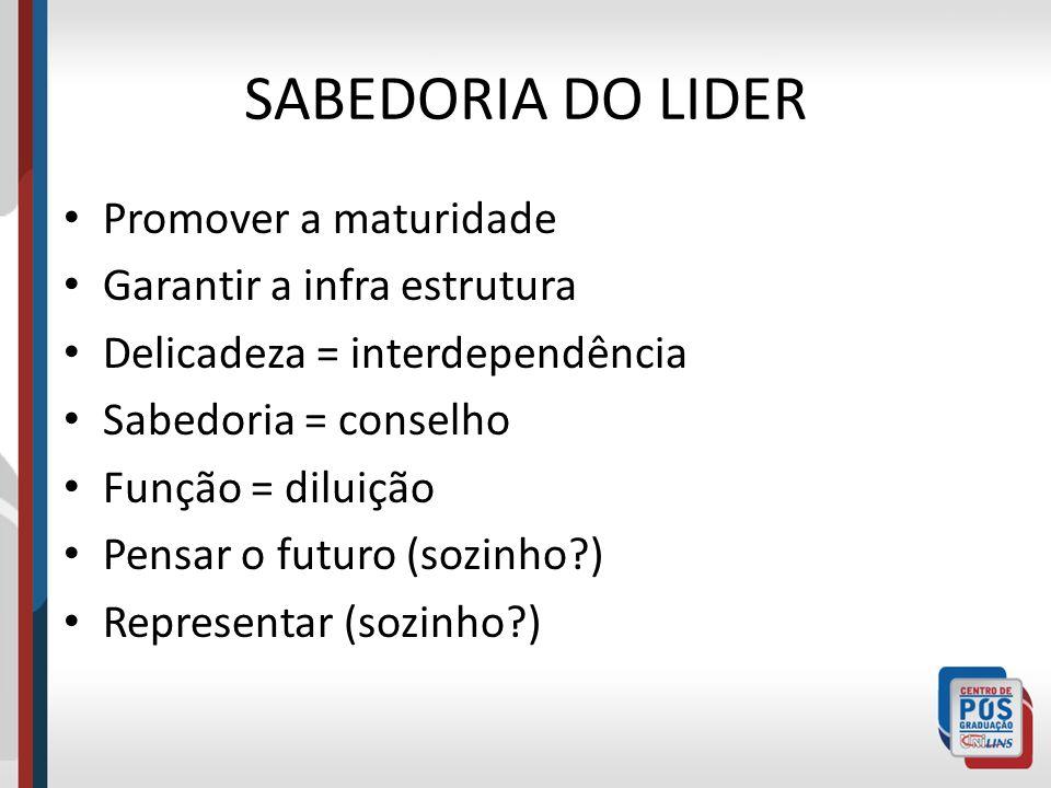 SABEDORIA DO LIDER Promover a maturidade Garantir a infra estrutura Delicadeza = interdependência Sabedoria = conselho Função = diluição Pensar o futu