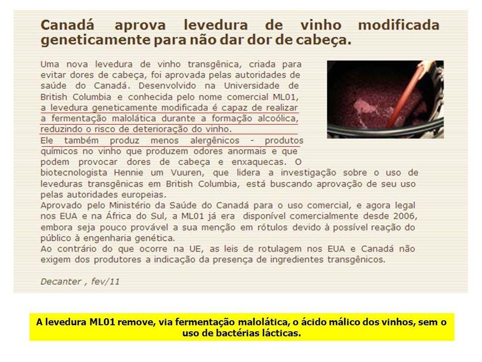 A levedura ML01 remove, via fermentação malolática, o ácido málico dos vinhos, sem o uso de bactérias lácticas.