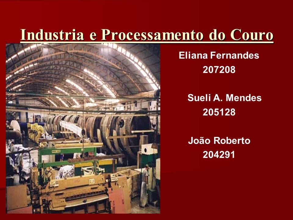 Industria e Processamento do Couro Eliana Fernandes 207208 Sueli A. Mendes 205128 João Roberto 204291