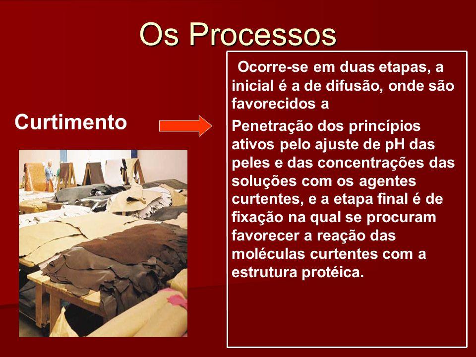 Os Processos Curtimento Ocorre-se em duas etapas, a inicial é a de difusão, onde são favorecidos a Penetração dos princípios ativos pelo ajuste de pH