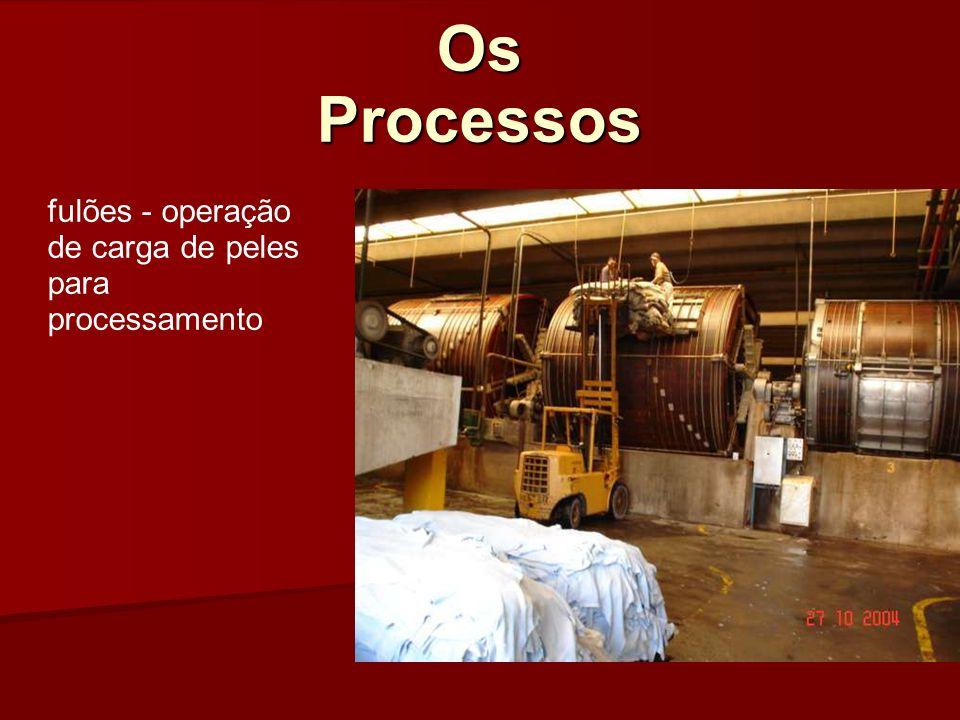 Os Processos fulões - operação de carga de peles para processamento