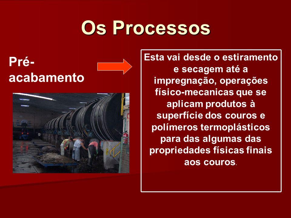 Os Processos Esta vai desde o estiramento e secagem até a impregnação, operações físico-mecanicas que se aplicam produtos à superfície dos couros e po