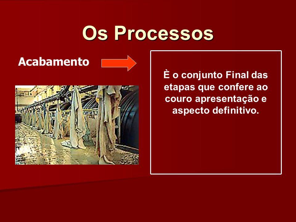 Os Processos Acabamento È o conjunto Final das etapas que confere ao couro apresentação e aspecto definitivo.