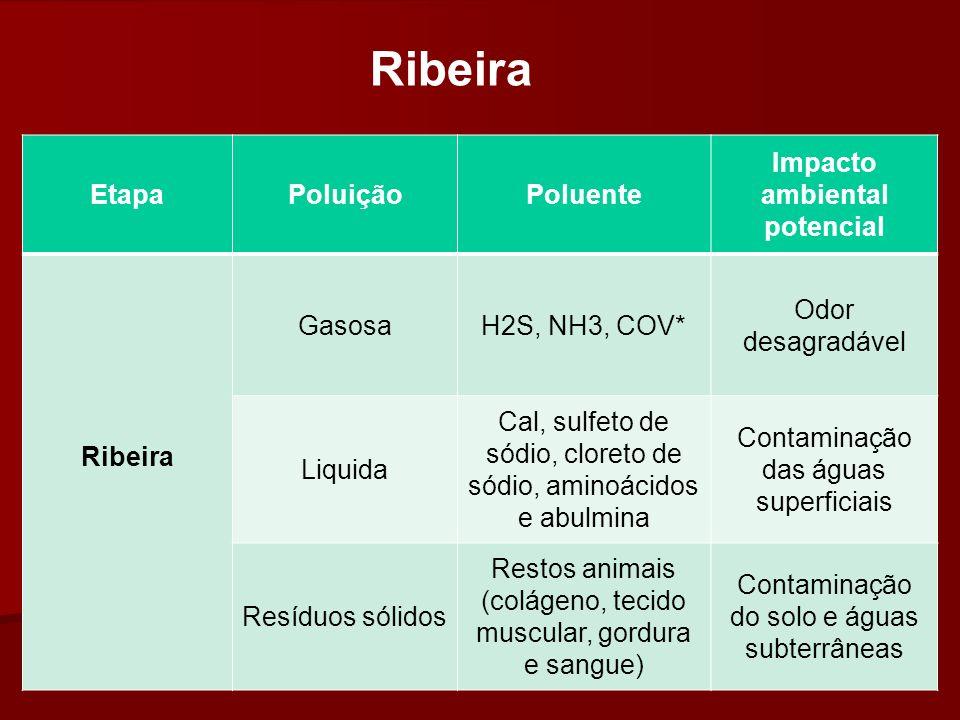 EtapaPoluiçãoPoluente Impacto ambiental potencial Ribeira GasosaH2S, NH3, COV* Odor desagradável Liquida Cal, sulfeto de sódio, cloreto de sódio, amin