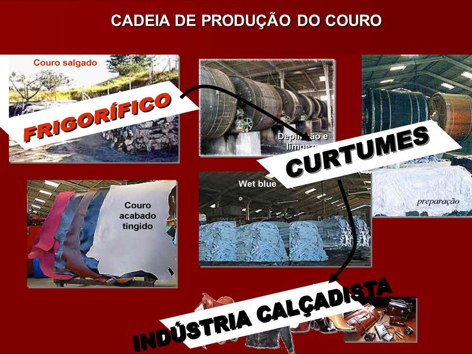 CADEIA DE PRODUÇÃO DO COURO
