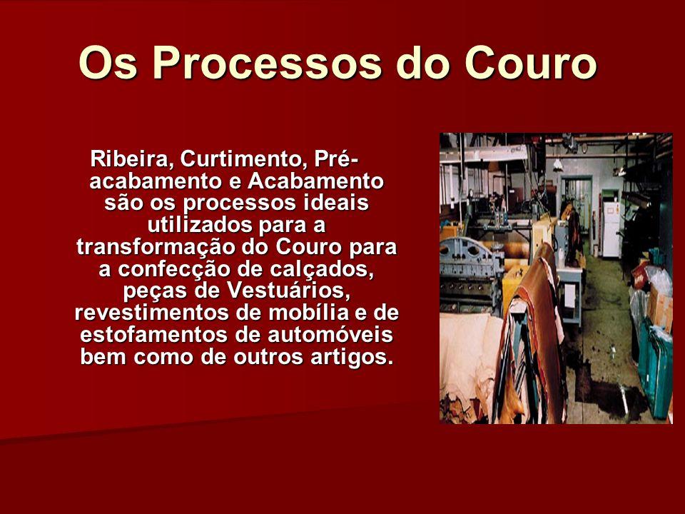 Os Processos do Couro Ribeira, Curtimento, Pré- acabamento e Acabamento são os processos ideais utilizados para a transformação do Couro para a confec