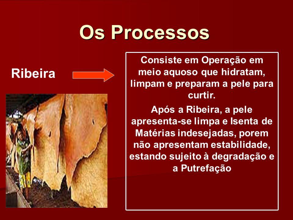 Os Processos Consiste em Operação em meio aquoso que hidratam, limpam e preparam a pele para curtir. Após a Ribeira, a pele apresenta-se limpa e Isent