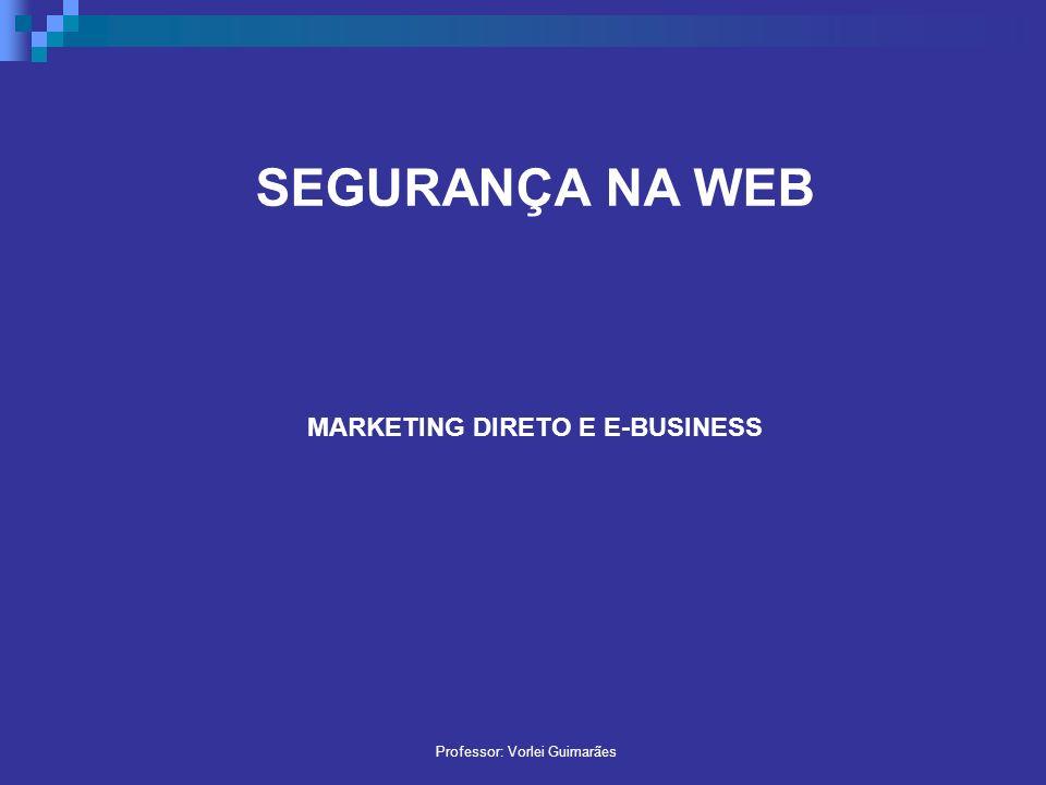 SEGURANÇA NA WEB MARKETING DIRETO E E-BUSINESS Professor: Vorlei Guimarães