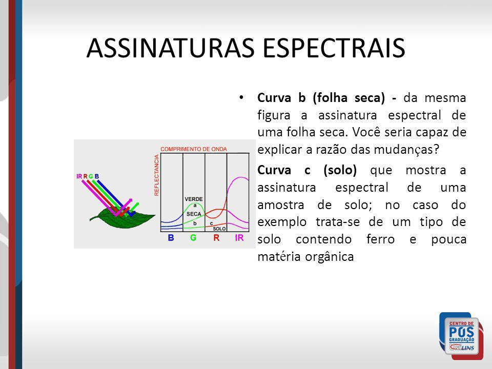 ASSINATURAS ESPECTRAIS Curva b (folha seca) - da mesma figura a assinatura espectral de uma folha seca. Você seria capaz de explicar a razão das mudan