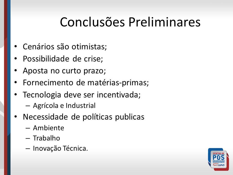 Conclusões Preliminares Cenários são otimistas; Possibilidade de crise; Aposta no curto prazo; Fornecimento de matérias-primas; Tecnologia deve ser in